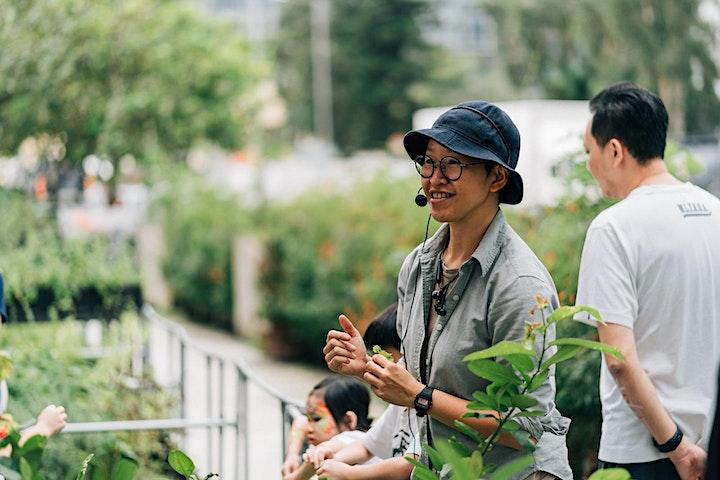 香草種植工作坊 Herb  Workshop x 探索烏龍茶工作坊 Discover the Oolong Tea (Session A) image