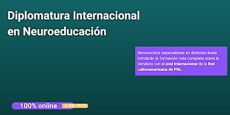 Diplomatura Internacional en Neuroeducacion entradas