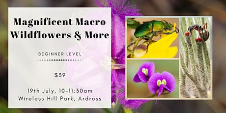 Magnificent Macro - Wildflowers and More at Wireless Hill tickets