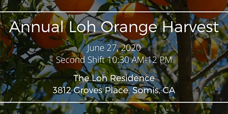 Annual Loh Orange Harvest (Second Shift from 10:30am to Noon) tickets