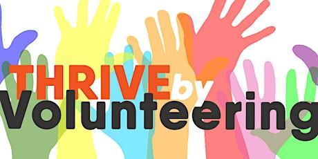 Bridge to Volunteering tickets