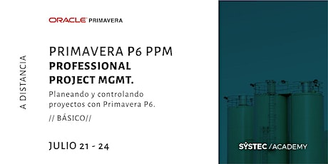 Primavera P6 PPM | Professional Project Mgmt. entradas