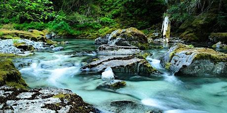 Oregon Wim Hof Method Weekend Retreat in Opal Creek Wilderness tickets