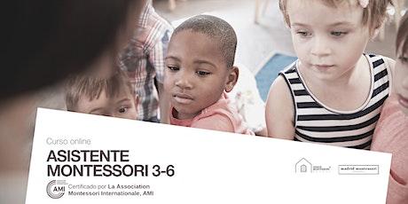 Curso Asistente Montessori AMI 3-6 entradas