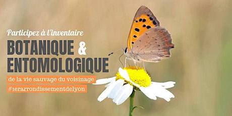 Inventaire des plantes et insectes #1erarrondissementLyon billets