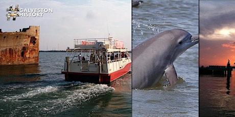 Galveston Historic Harbor Tour & Dolphin Watch tickets