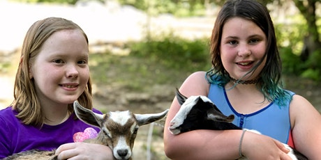 Bellwether Farm's Family Days! tickets