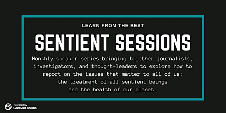 Sentient Sessions: How to Build an Investigative Story with Lee Fang image