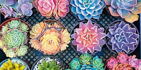 Creative Container Gardening w. Darlene tickets
