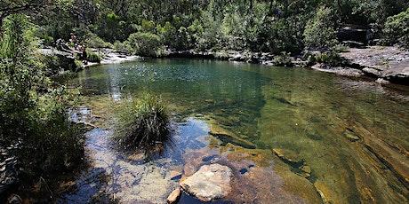 Women's Karloo Pools Day Hike tickets