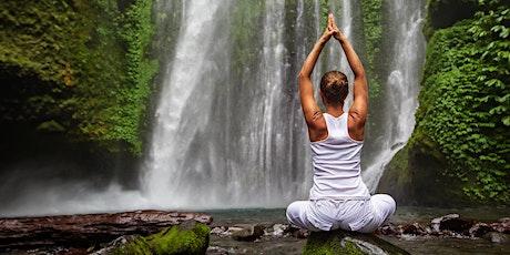 Women's Retreat & Waterfalls Hike ~  Half Day // Sept 5th tickets