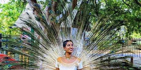 Hello Holidays: Indian Jungle Dance Safari tickets