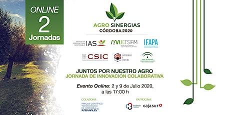 Agrosinergias Córdoba. Encuentro online entradas