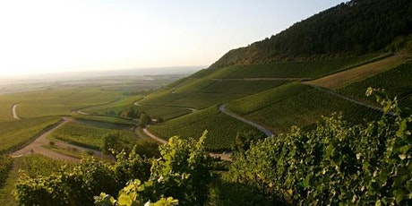 Virtuelle Weinprobe beim Weingut Hans Wirsching Tickets