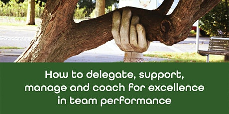 How to delegate, support, manage and coach for excellence in team performance tickets