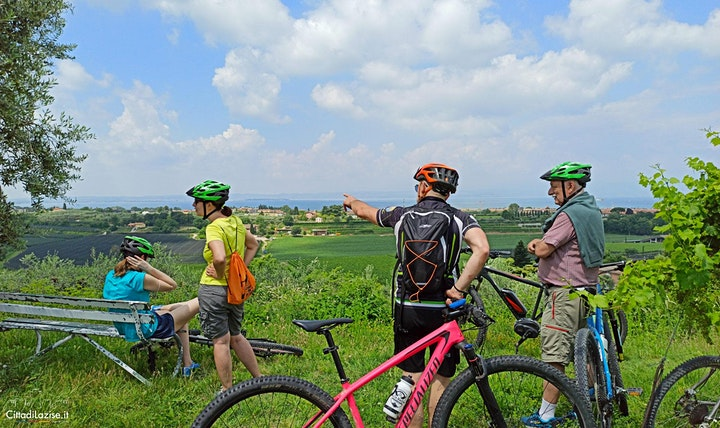 Bike Tour and wine tasting in Colà di Lazise image