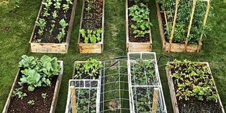 Vegetable Gardening Series for Beginners-Session 1:  Site Selection tickets
