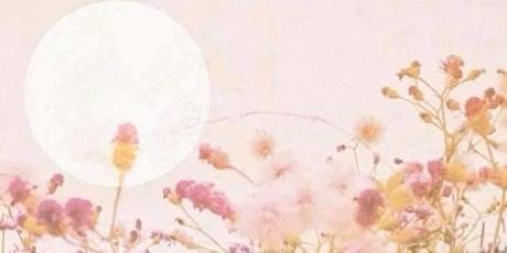 Sacred Sisterhood- Full Moon Meditation tickets