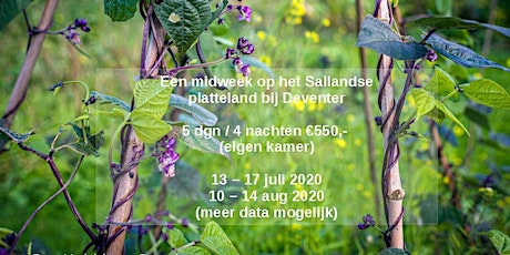 Kookvakantie (vegetarisch) in eigen land tickets