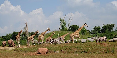 Safari Zoo Admission tickets
