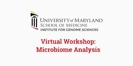 Virtual Microbiome Analysis Workshop tickets