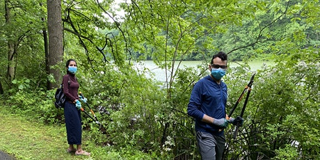 Invasive Plant Removal at Willson's Woods Park tickets