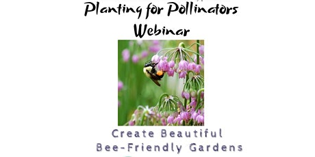 Webinar: Planting for Pollinators, How to Create a Beautiful Bee Garden tickets