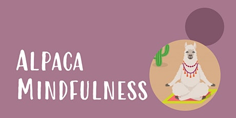 Alpaca Mindfulness Summer Evening Special tickets