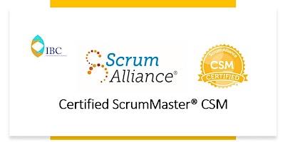 Certified Scrum Master® CSM - Remote class