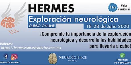 """CURSO """"HERMES: EXPLORACÍON NEUROLÓGICA"""" entradas"""