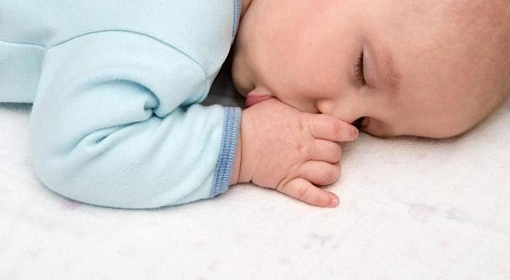 Immagine Corso ONLINE su Il sonno dei bambini: il Metodo Dolce di The Family Trainer