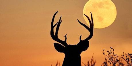Full Buck Moon Drum Journey tickets