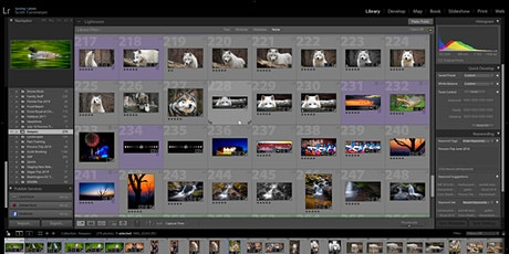 Editing Your Photography Class: Beginner Adobe Lightroom (Online Class) tickets