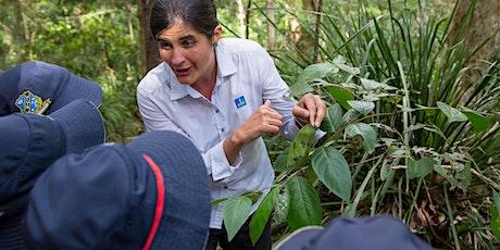 Bush Buddies Biodiversity Walk tickets