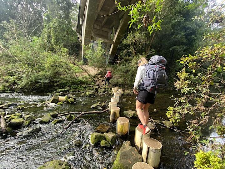 Women's Overnight Hike // Great North Walk image
