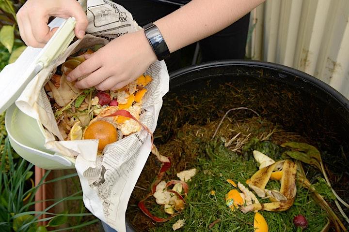 Webinar - Worm farming and composting workshop -  April 2021 image