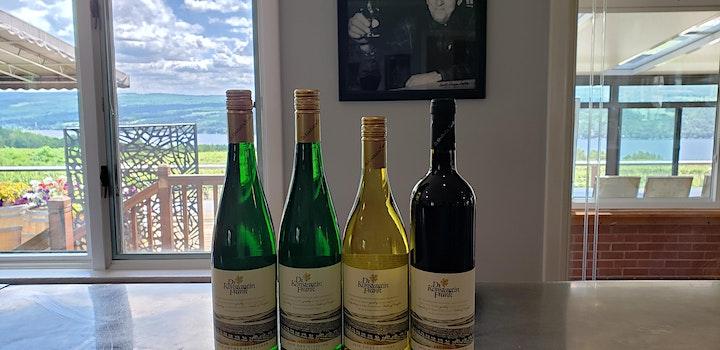 Virtual wine tasting event to benefit Sustainable Saratoga image