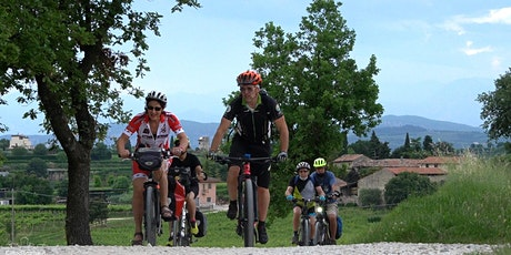 Bike Tour and wine tasting in Colà di Lazise biglietti