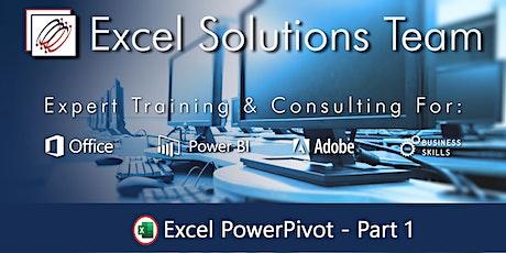 Microsoft Excel PowerPivot Level 1 (1-Day Webinar) tickets