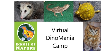 Virtual Camp: Dino Mania (ages 4-5) tickets