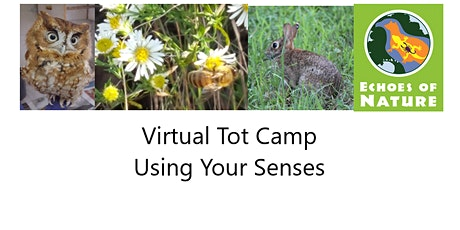 Virtual Tot Camp: Using Your Senses tickets