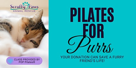 Pilates for Purrs tickets