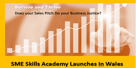 SME Skills Academy Officially Launches in Wales tickets