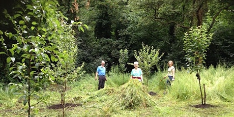 Westcombe Woodlands - July Volunteer Workparties tickets