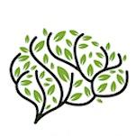Het Blije Brein  logo