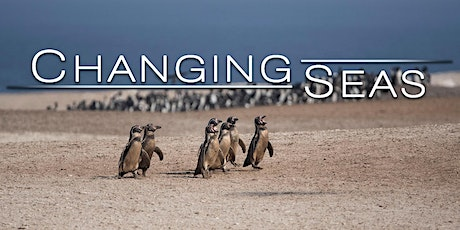 Virtual Screening of Peru's Desert Penguins tickets
