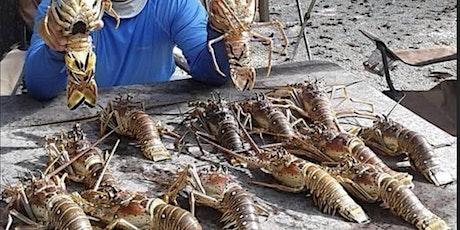 Lobstering tickets