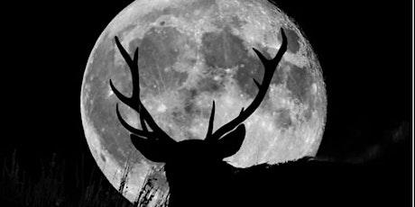 July's Full Moon Meditation tickets