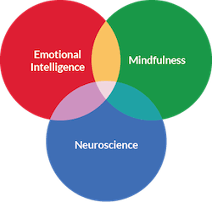 Search Inside Yourself - Mindful Leadership Training (English) - ONLINE image