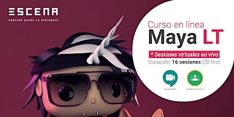 Curso en línea- Maya LT entradas